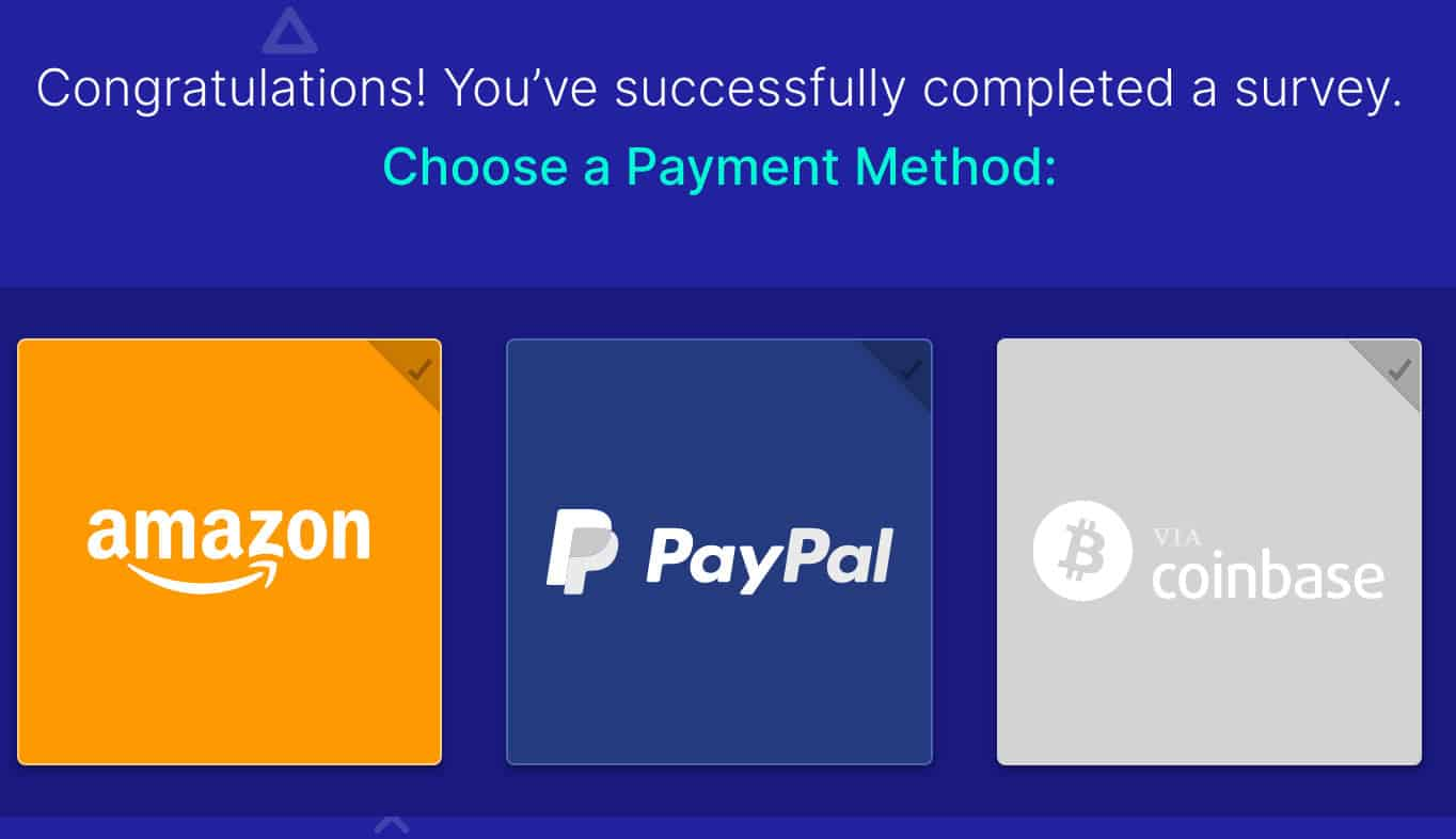 surveytime payment